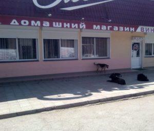 Магазин Ольга Ульяновых 1д